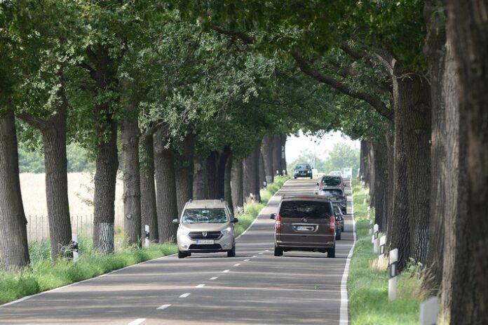 image 1 43 696x463 - Die Allee verzeiht keine Fahrfehler Jeder vierte Todesfall auf Landstraßen nach Baumkollision