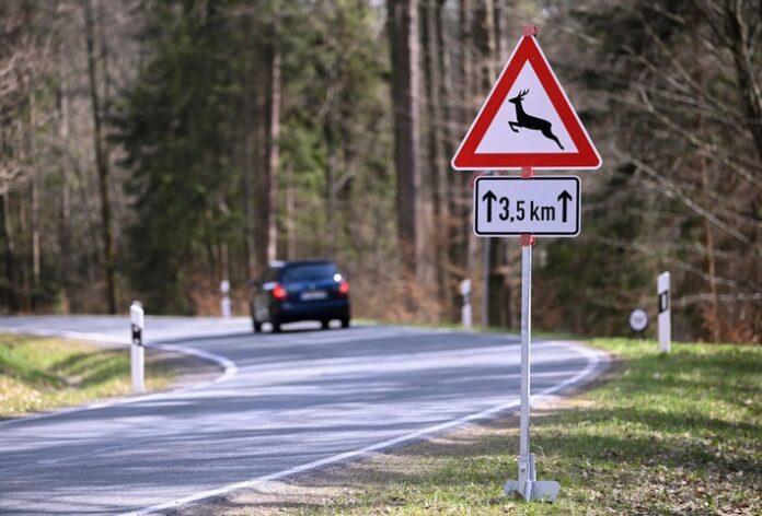 image 1 37 696x472 - Wildunfall vermeiden: Wo Reh und Wildschwein häufig die Straße queren